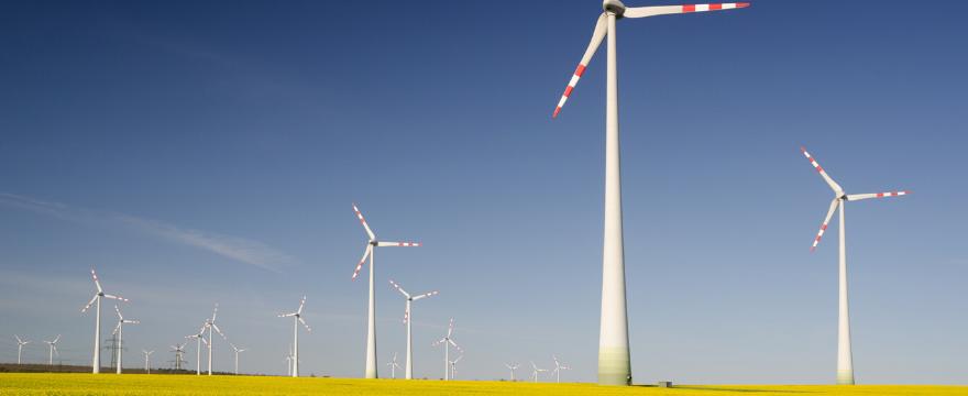 Tutte le bugie che ti hanno raccontato sugli Investimenti Sostenibili (ESG)