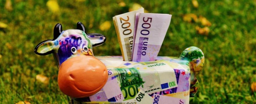 Fatti domande da 50.000 euro, non da 5 euro
